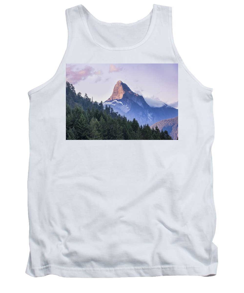 British Columbia Tank Top featuring the photograph Mount Denman In Desolation Sound Marine by Debra Brash
