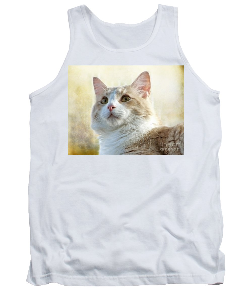 Cats Tank Top featuring the photograph My Squishy by Ellen Cotton