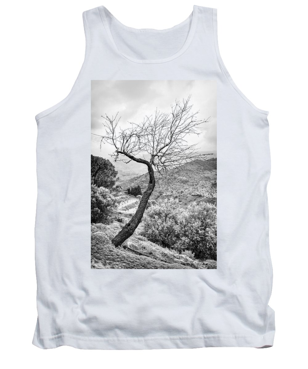 Tree Tank Top featuring the photograph Naked by Alfio Finocchiaro