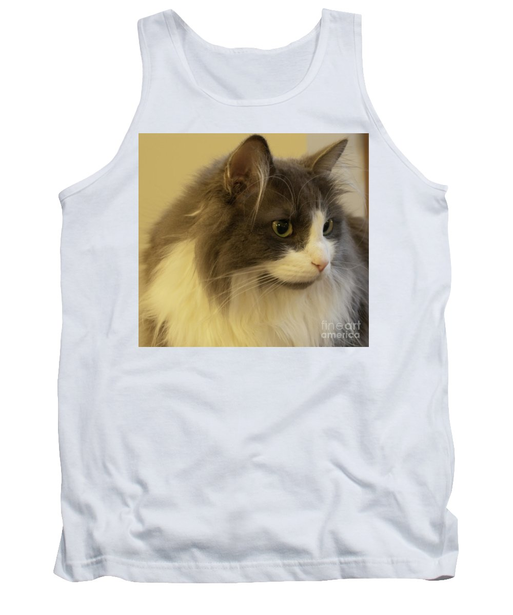 Cat Tank Top featuring the photograph Observant by Ann Horn