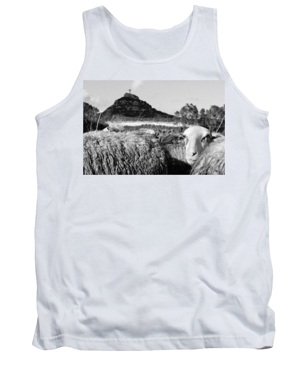Sheep Tank Top featuring the photograph Old Days by Focus Fotos