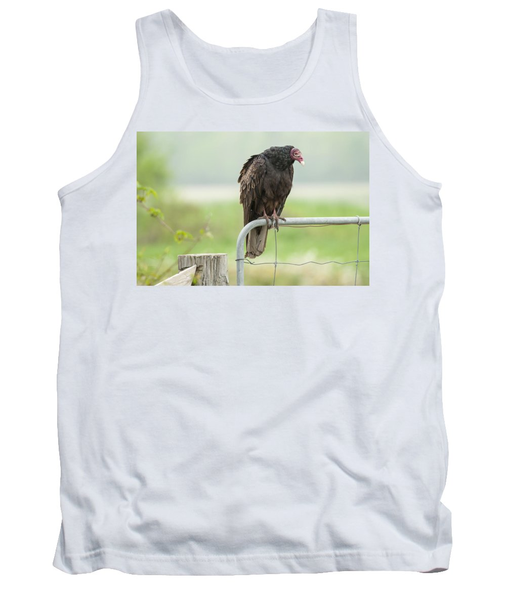 Bird Tank Top featuring the photograph On The Fence by Richard Kitchen