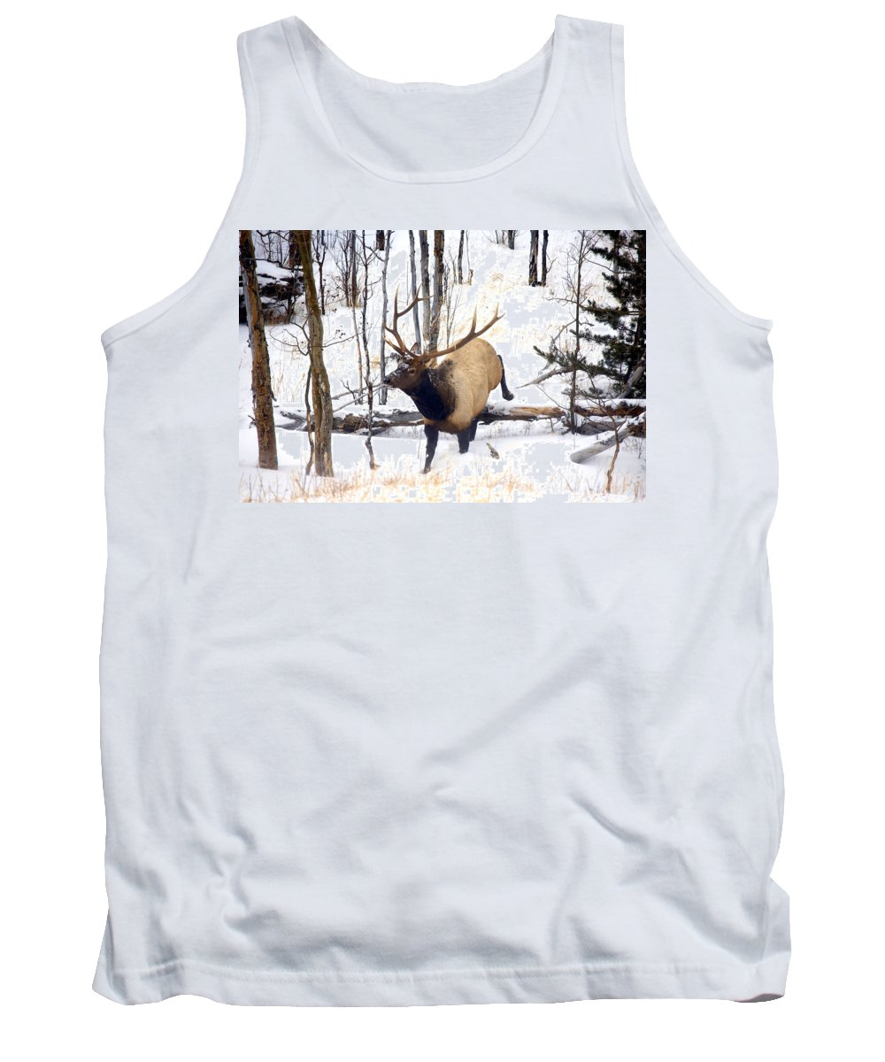 Elk Tank Top featuring the photograph On The Move by Mike Dawson