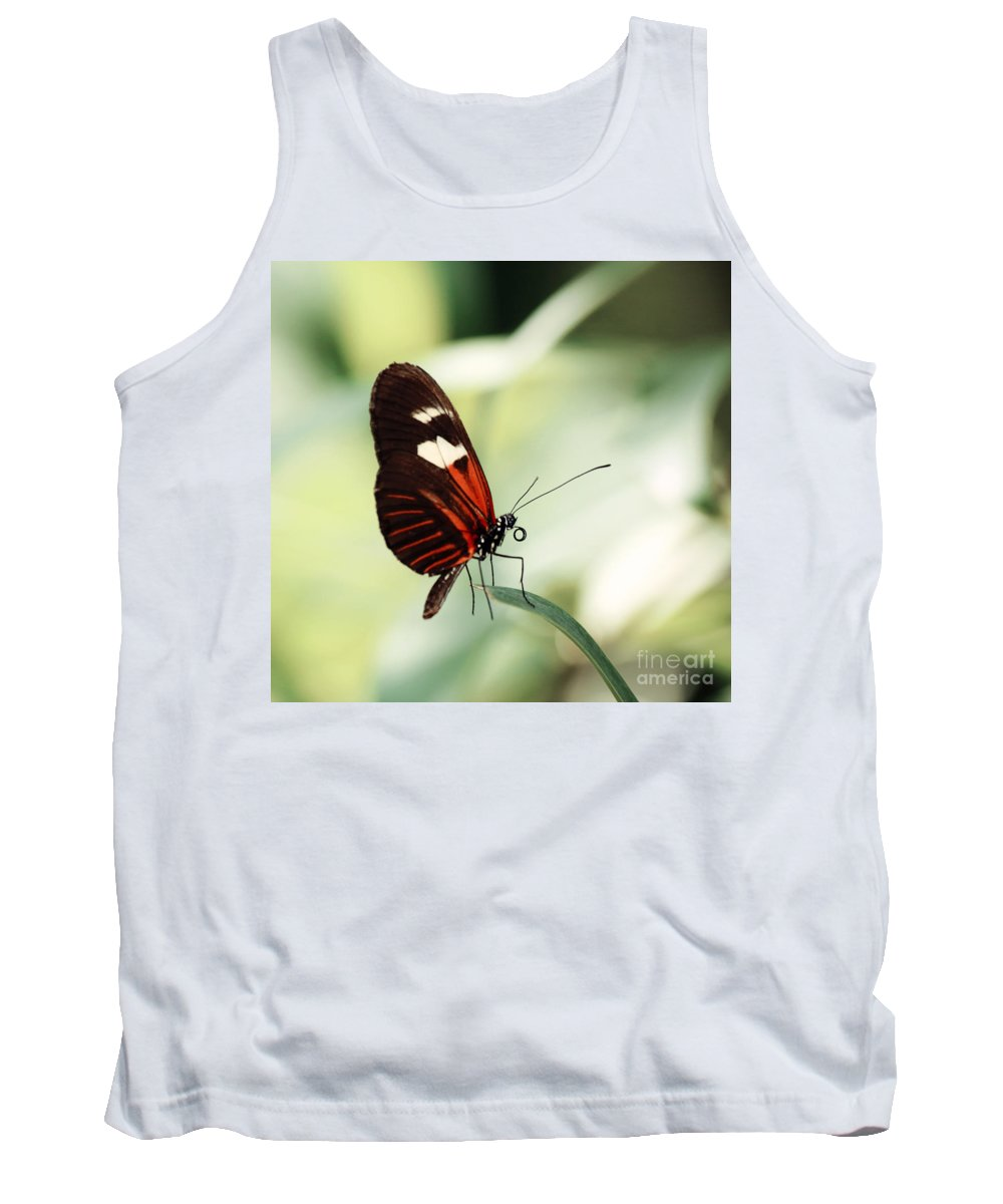 Photography Tank Top featuring the photograph On The Tips Of My Toes by Jackie Farnsworth