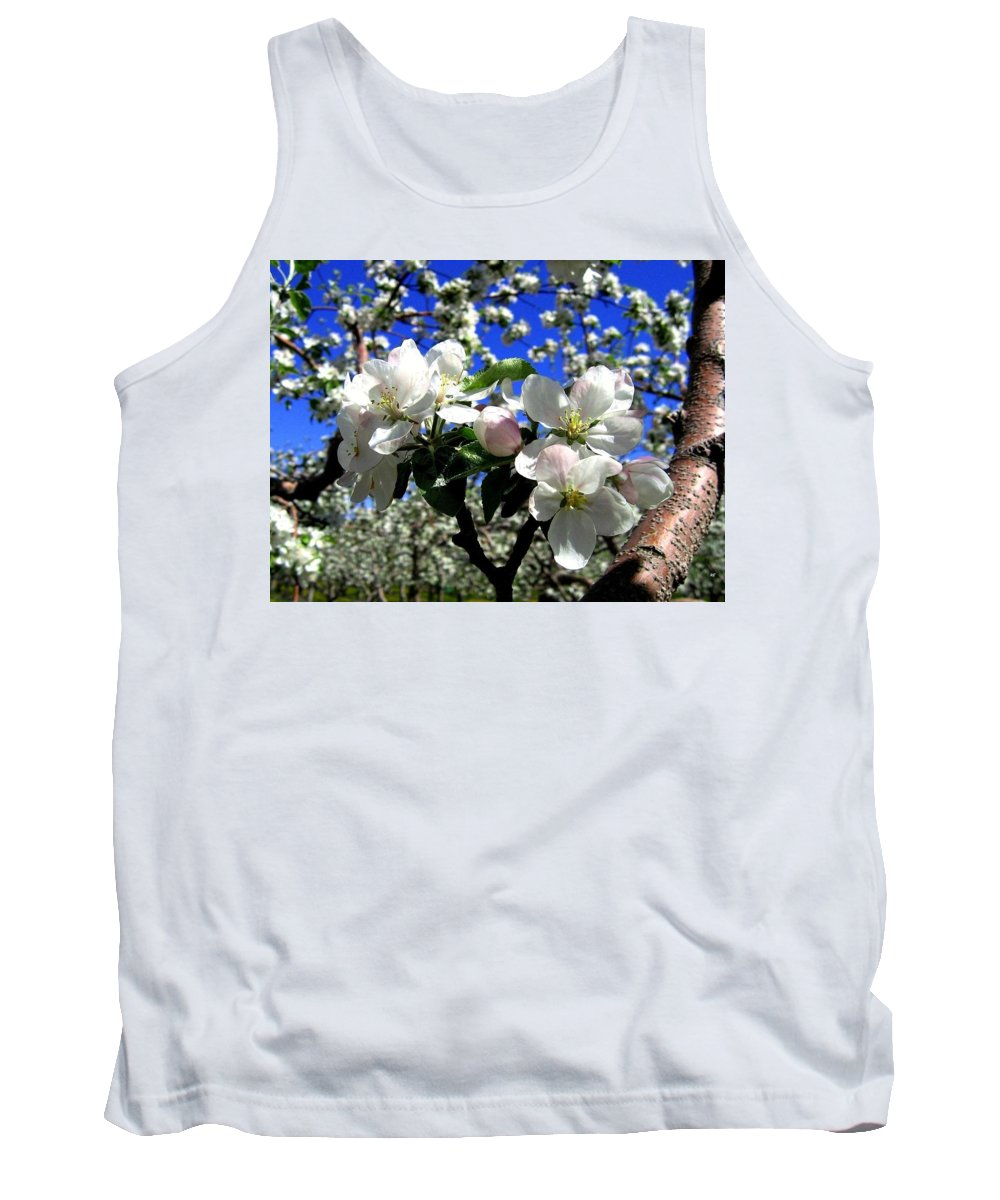 Apple Blossoms Tank Top featuring the photograph Orchard Ovation by Will Borden