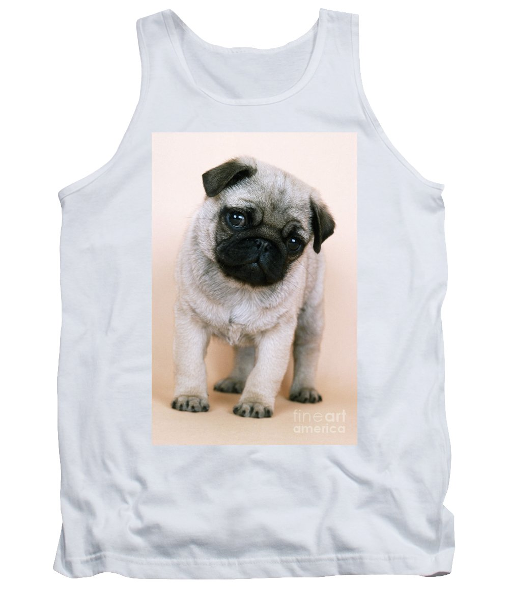 Pug Tank Top featuring the photograph Pug Puppy Dog by John Daniels
