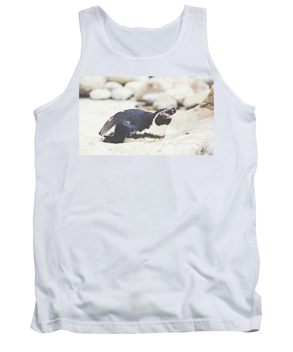 Bird Tank Top featuring the photograph Resting Penguin by Pati Photography