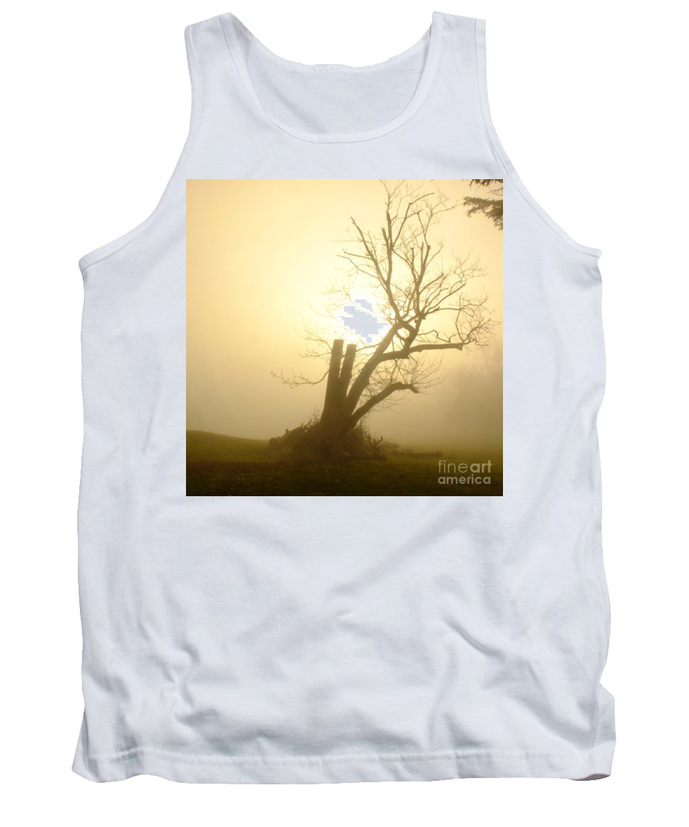 Stumpy Tree Tank Top featuring the photograph Richmond Park 13 by Simon Kennedy