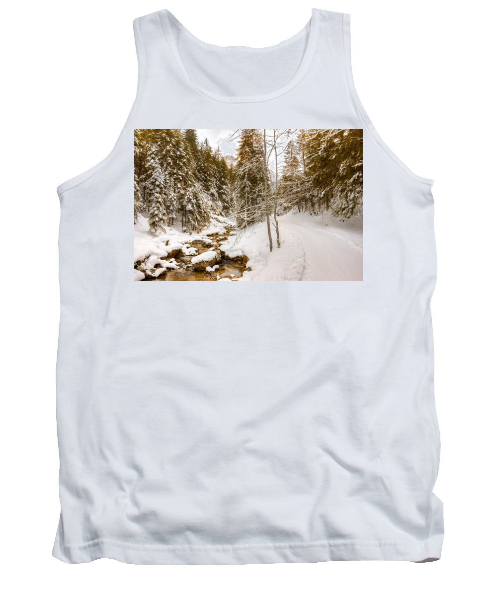 Forest Tank Top featuring the photograph River And Path by Pati Photography