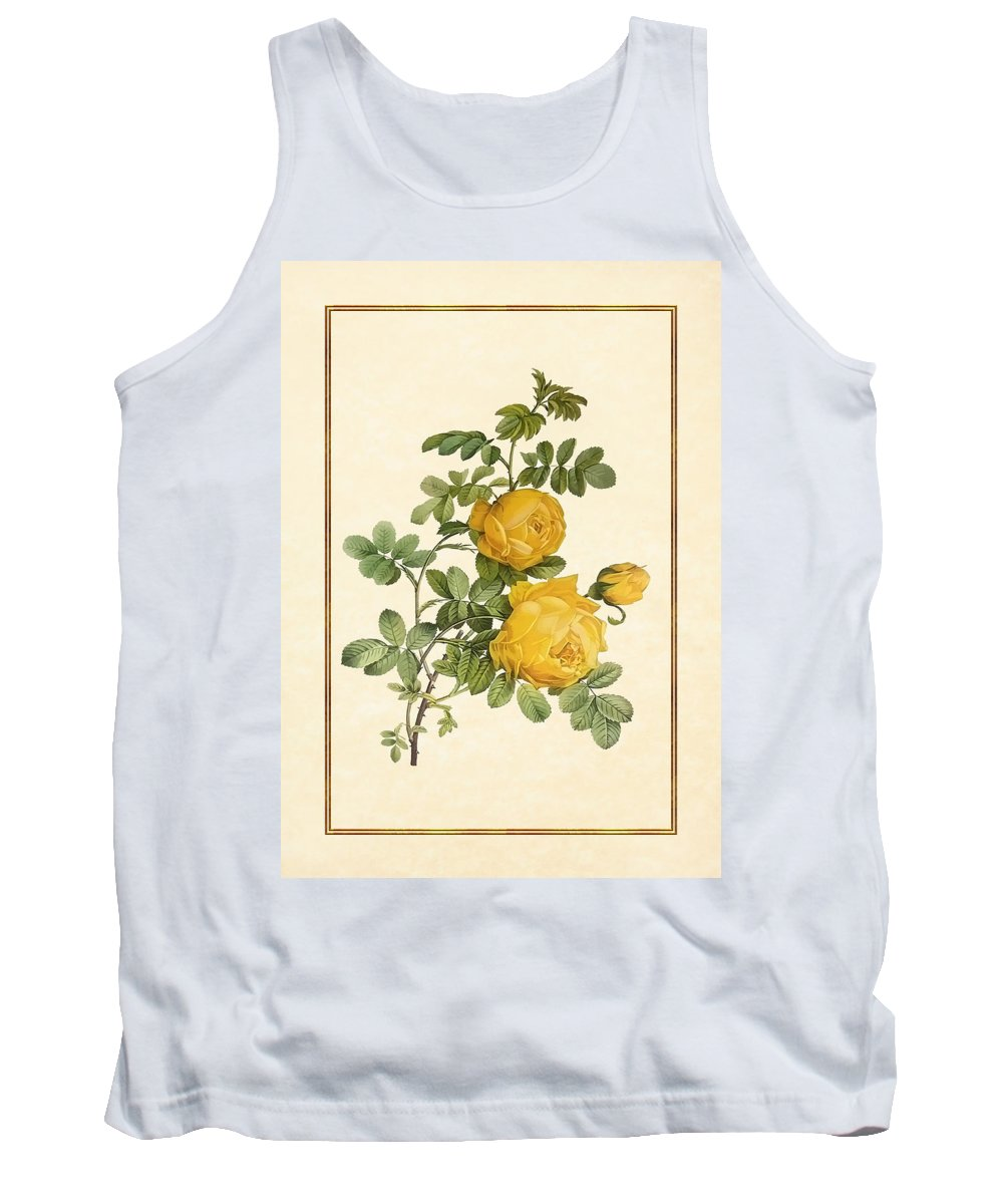 Antique Vintage Traditional Flower Floral Botanical Realistic Formal Plant Trees Tank Top featuring the painting Rosa Sulfurea -yellow Rose Vertical by Elaine Plesser