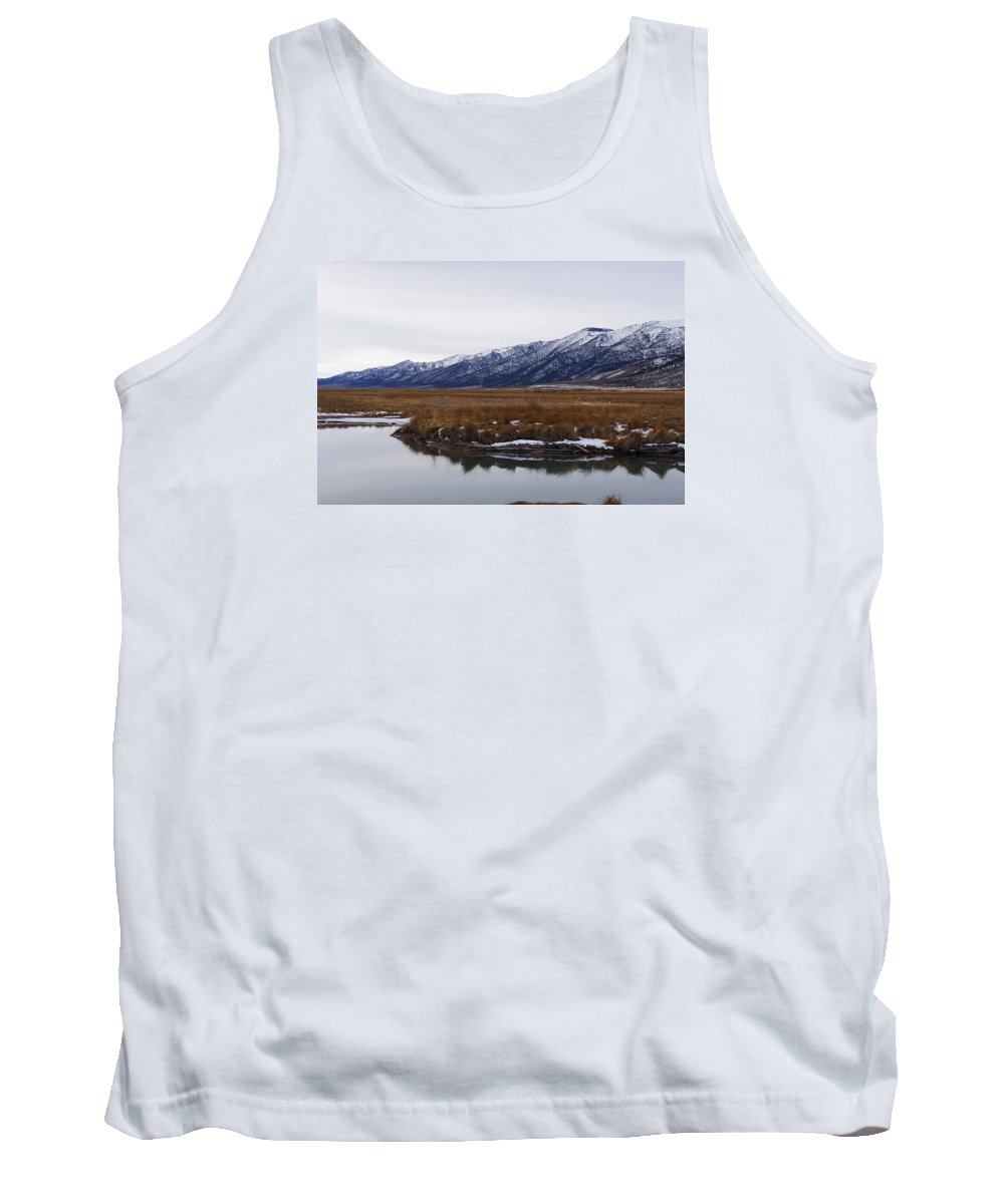 Landscape Tank Top featuring the photograph Ruby Marsh In Winter by Mike and Sharon Mathews