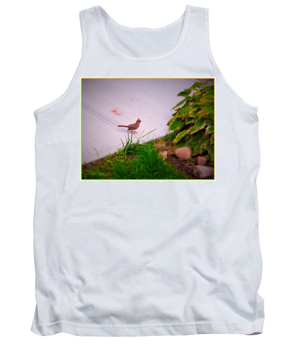 Searching For Mommy Tank Top featuring the photograph Searching For Mommy by Sonali Gangane