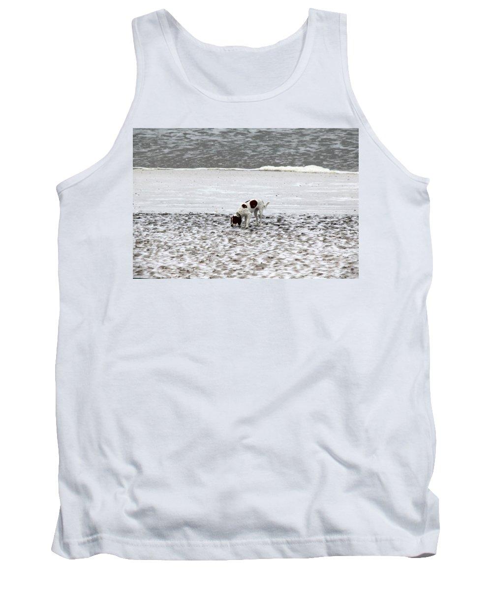Topsail Beach Tank Top featuring the photograph Seeking Sense Of Snow by Rand Wall