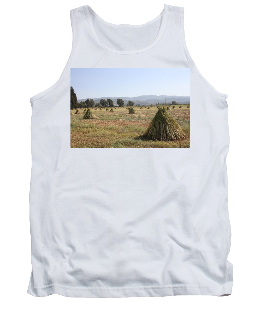 Sesame Tank Top featuring the photograph Sesame Crop And Harvest by Taiche Acrylic Art