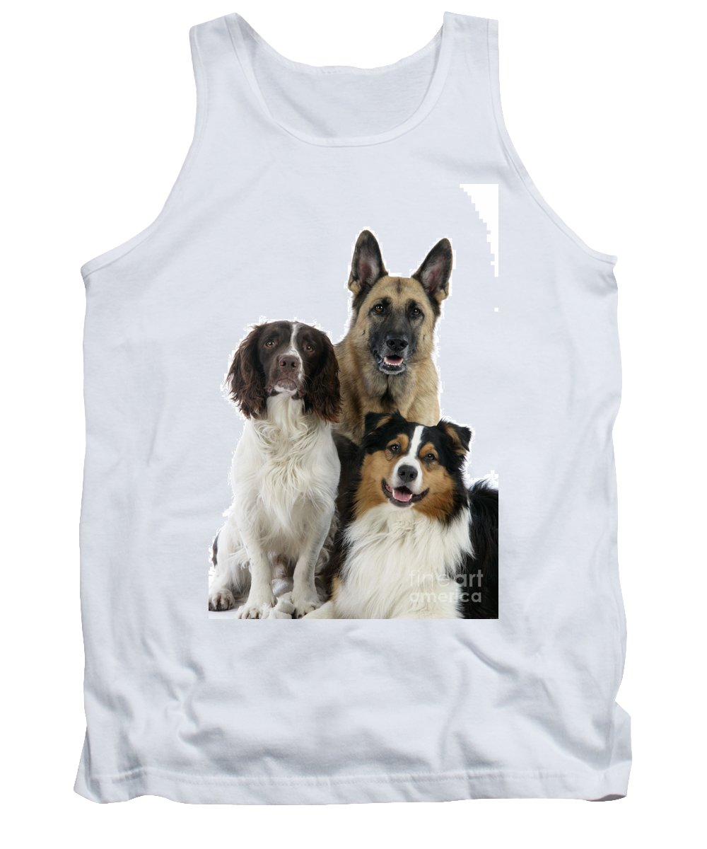 Dog Tank Top featuring the photograph Shepherds With English Springer Spaniel by John Daniels