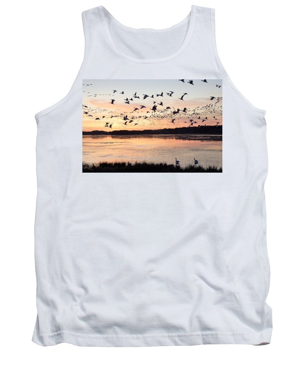 Chincoteague Tank Top featuring the photograph Snow Geese At Chincoteague Last Flight Of The Day by Bill Swindaman