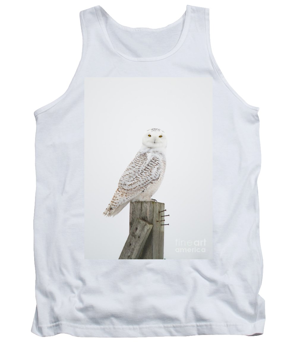 Field Tank Top featuring the photograph Snowy Perched Profile by Cheryl Baxter
