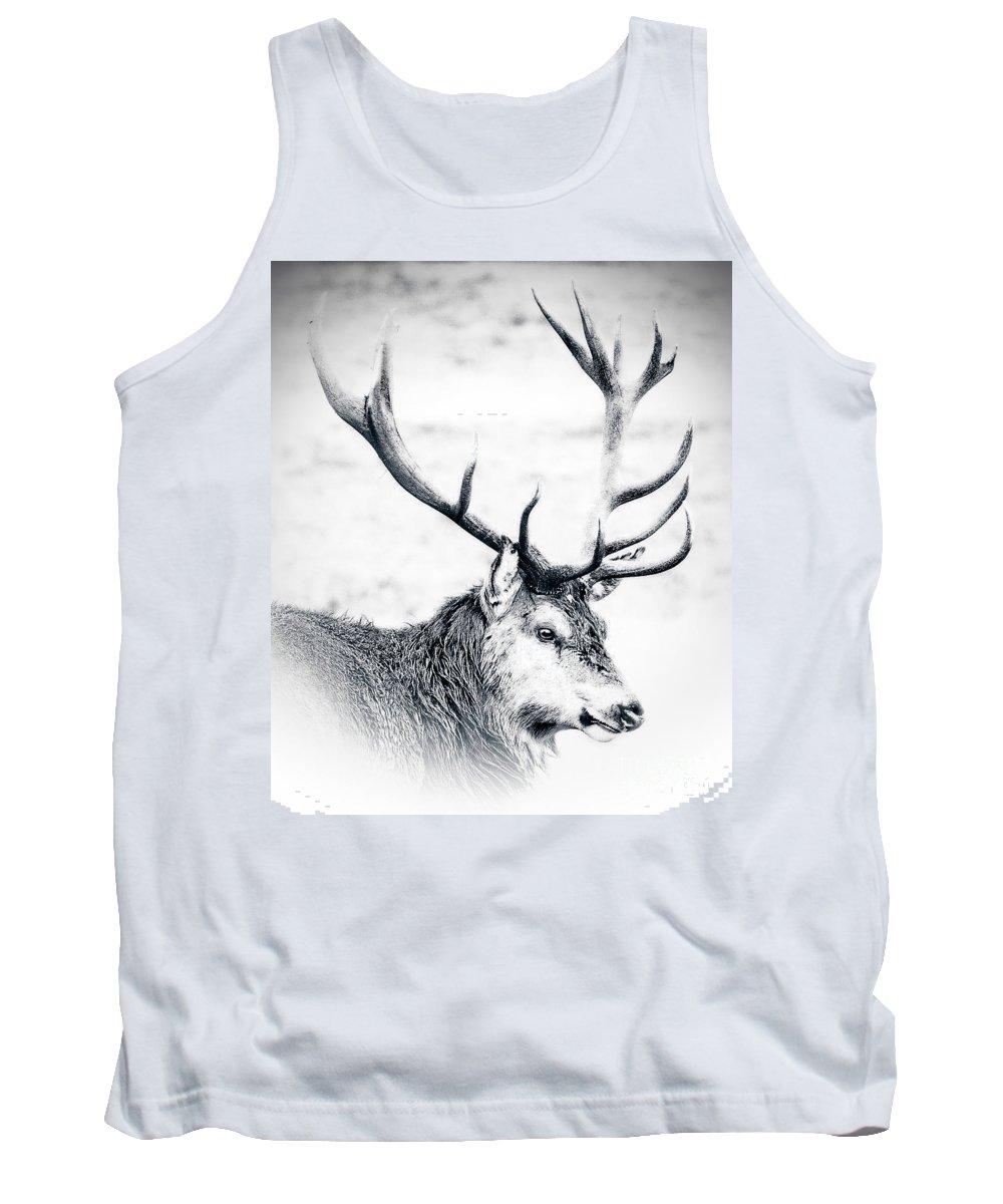 Stag Tank Top featuring the photograph Stag In Black And White by Linsey Williams