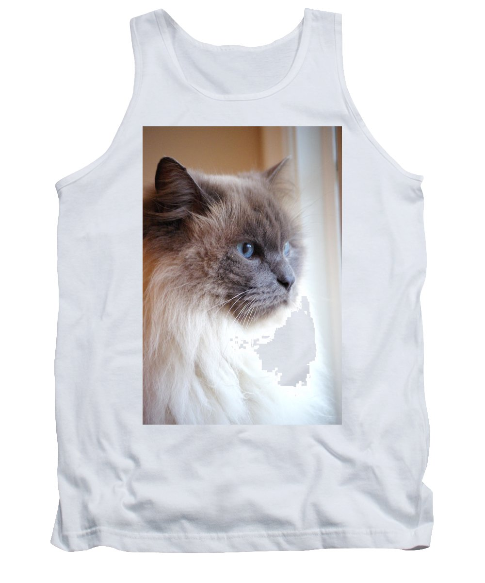 Cat Tank Top featuring the photograph Still Waiting by Cindy Johnston