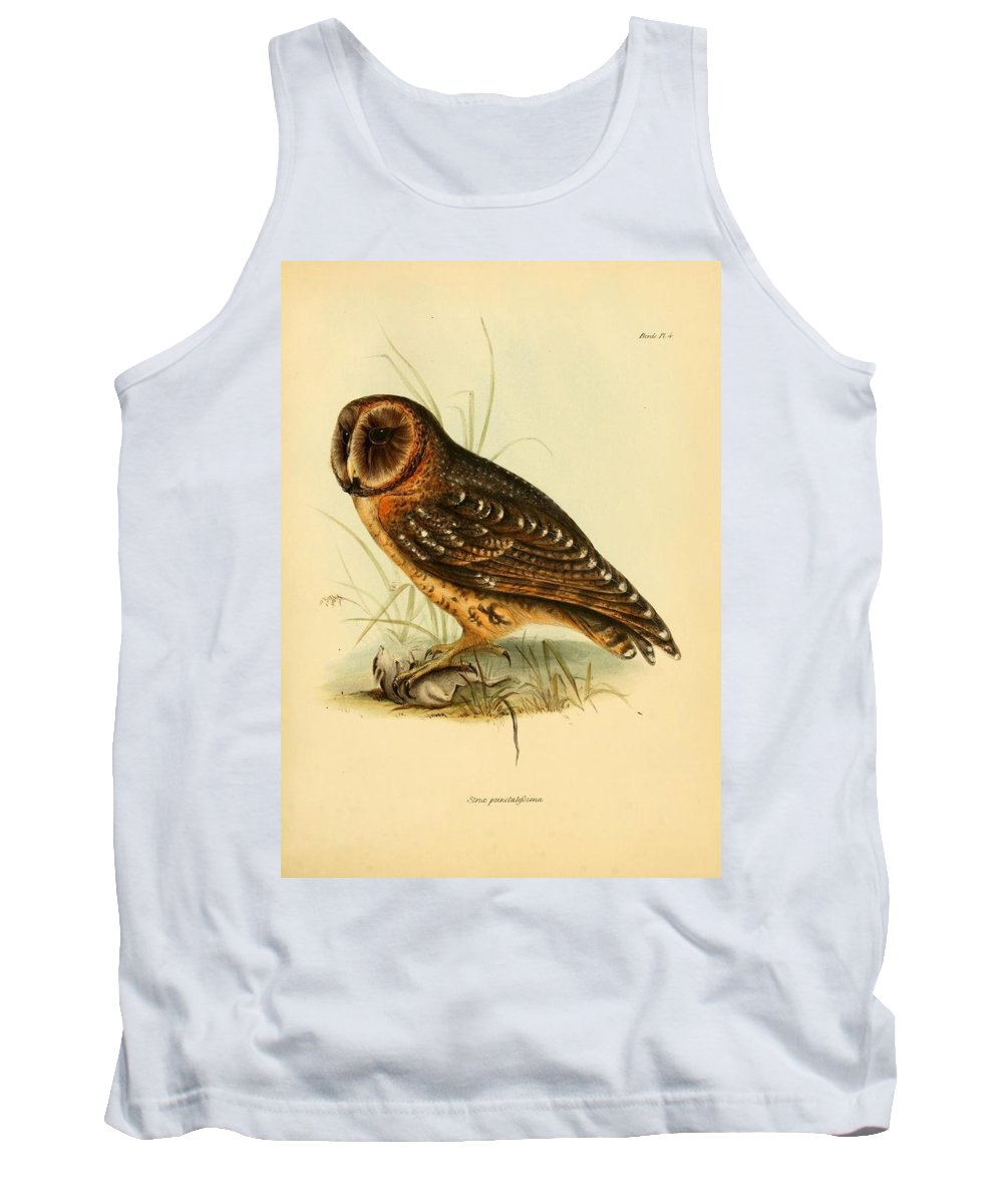 Audubon Tank Top featuring the painting Strix Owl by Philip Ralley