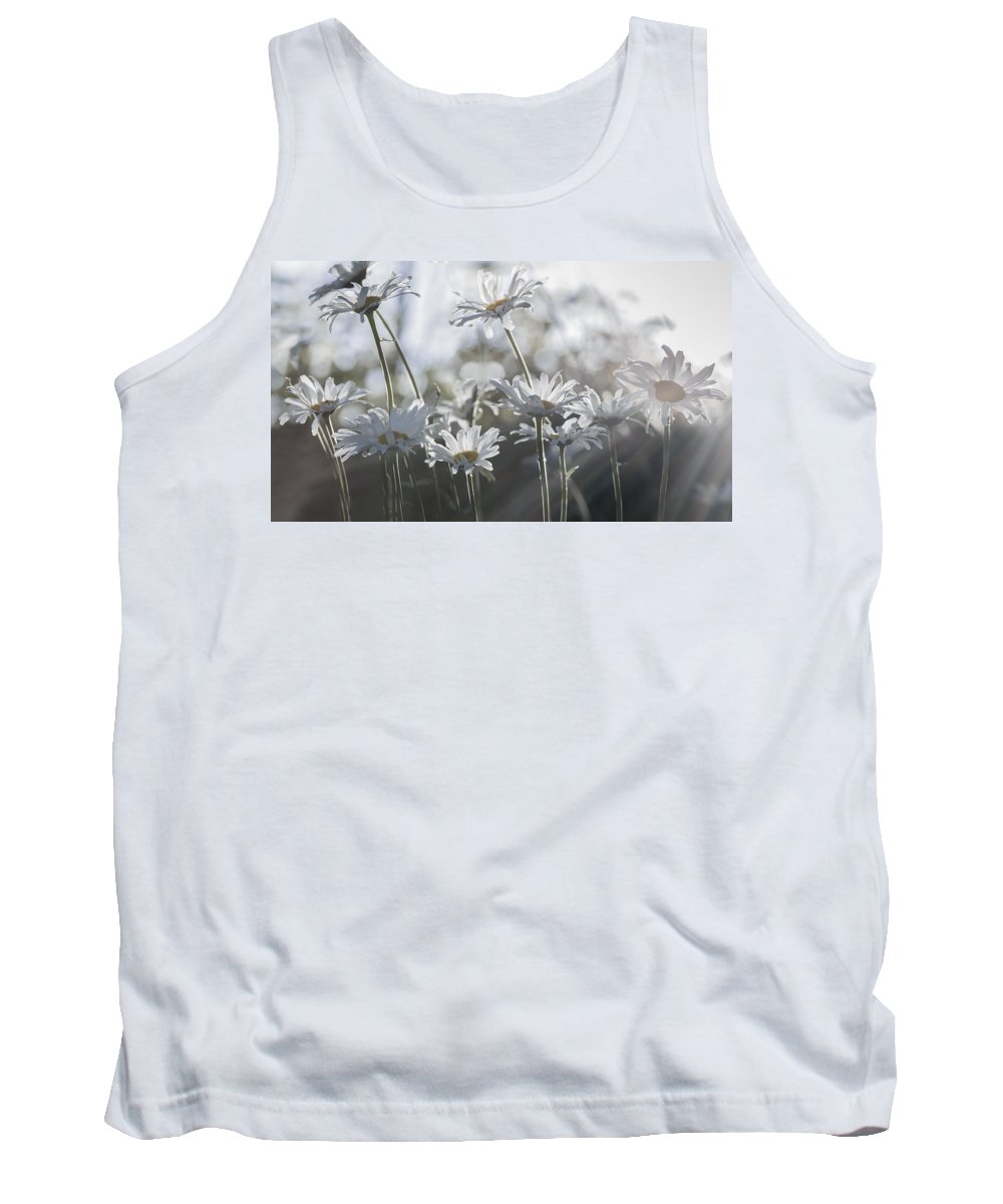 Back Light Tank Top featuring the photograph Summer Daisies by Eduard Moldoveanu