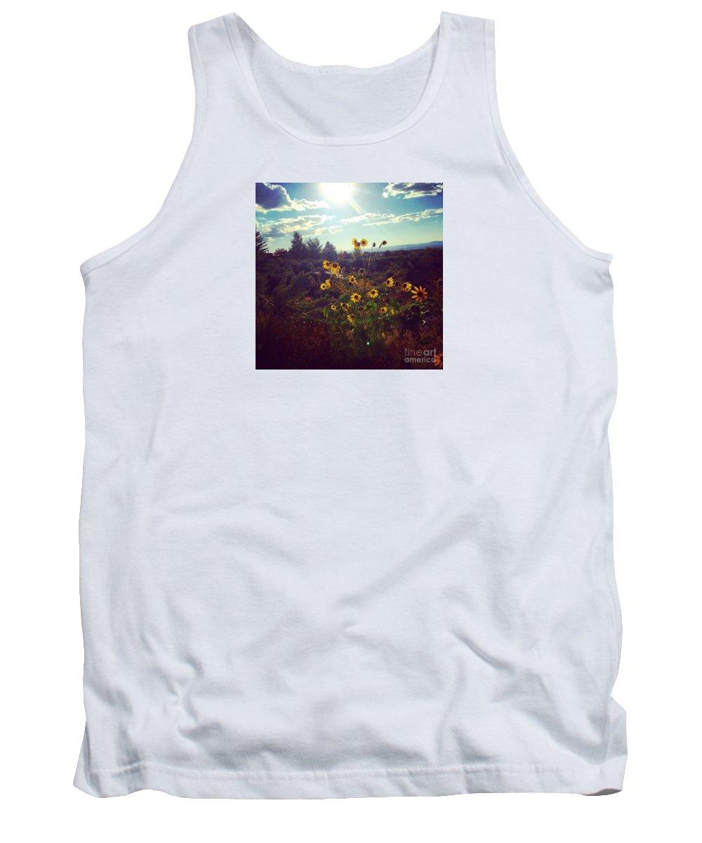 Sun Light Tank Top featuring the photograph Sunflowers In Sun Light by LeLa Becker