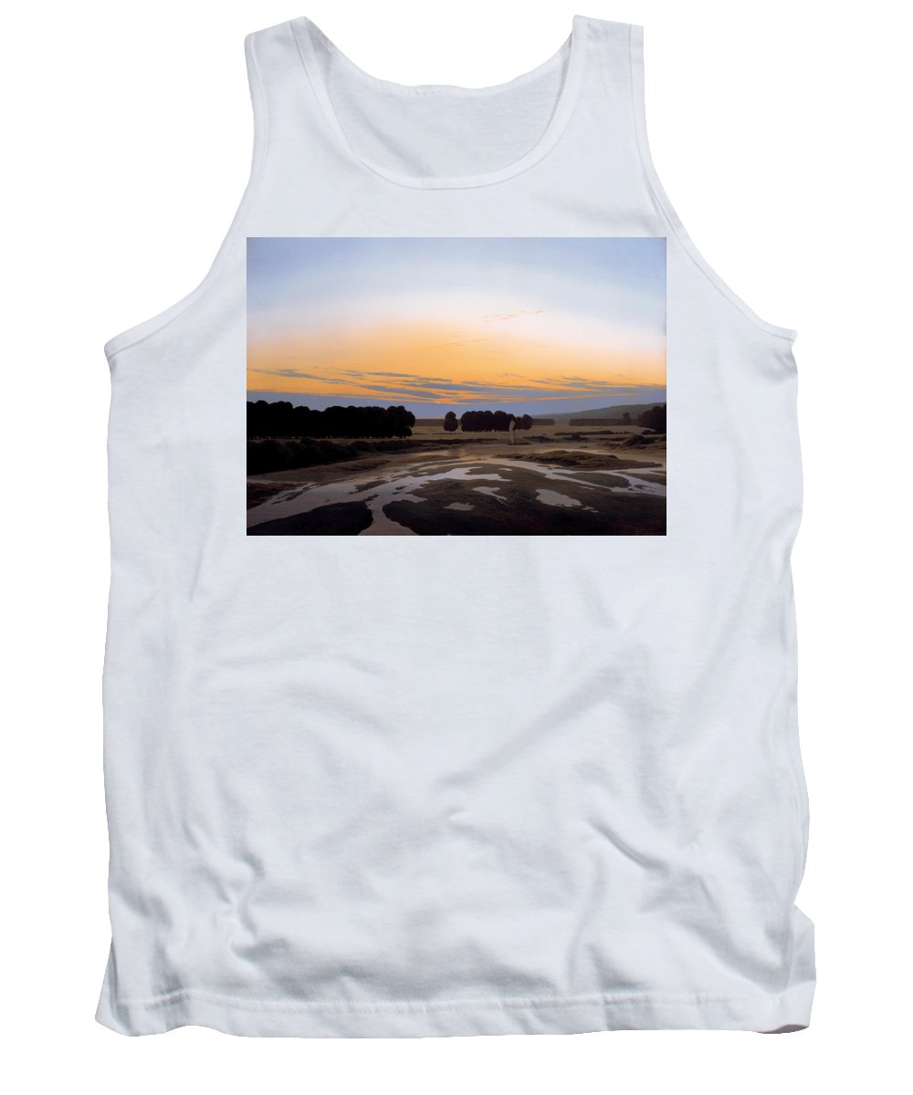 Painting Tank Top featuring the painting The Grosse Gehege Near Dresden by Mountain Dreams