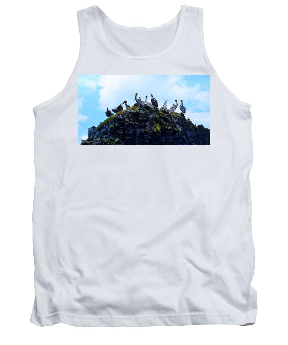 Seal Rock Tank Top featuring the photograph The Pelican Dance by Image Takers Photography LLC - Carol Haddon