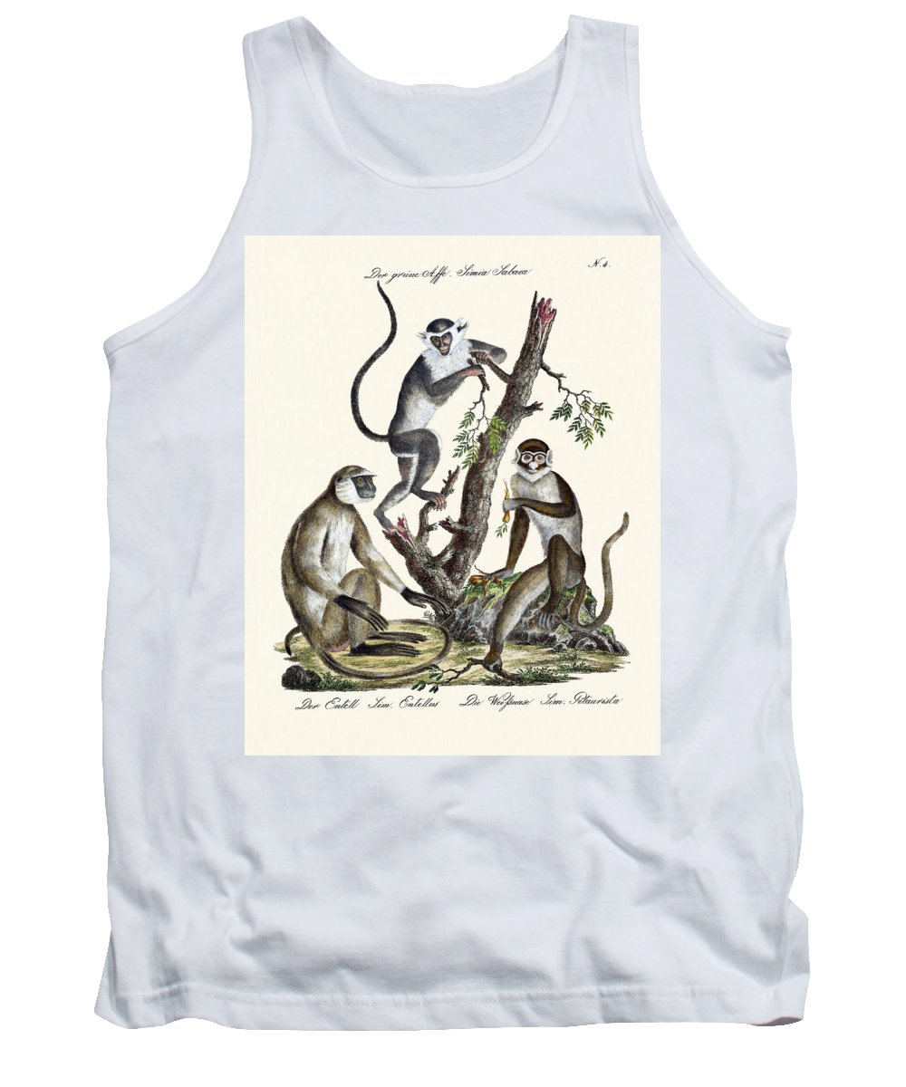 Der Grüne Affe Tank Top featuring the drawing The White-nosed Monkey by Splendid Art Prints
