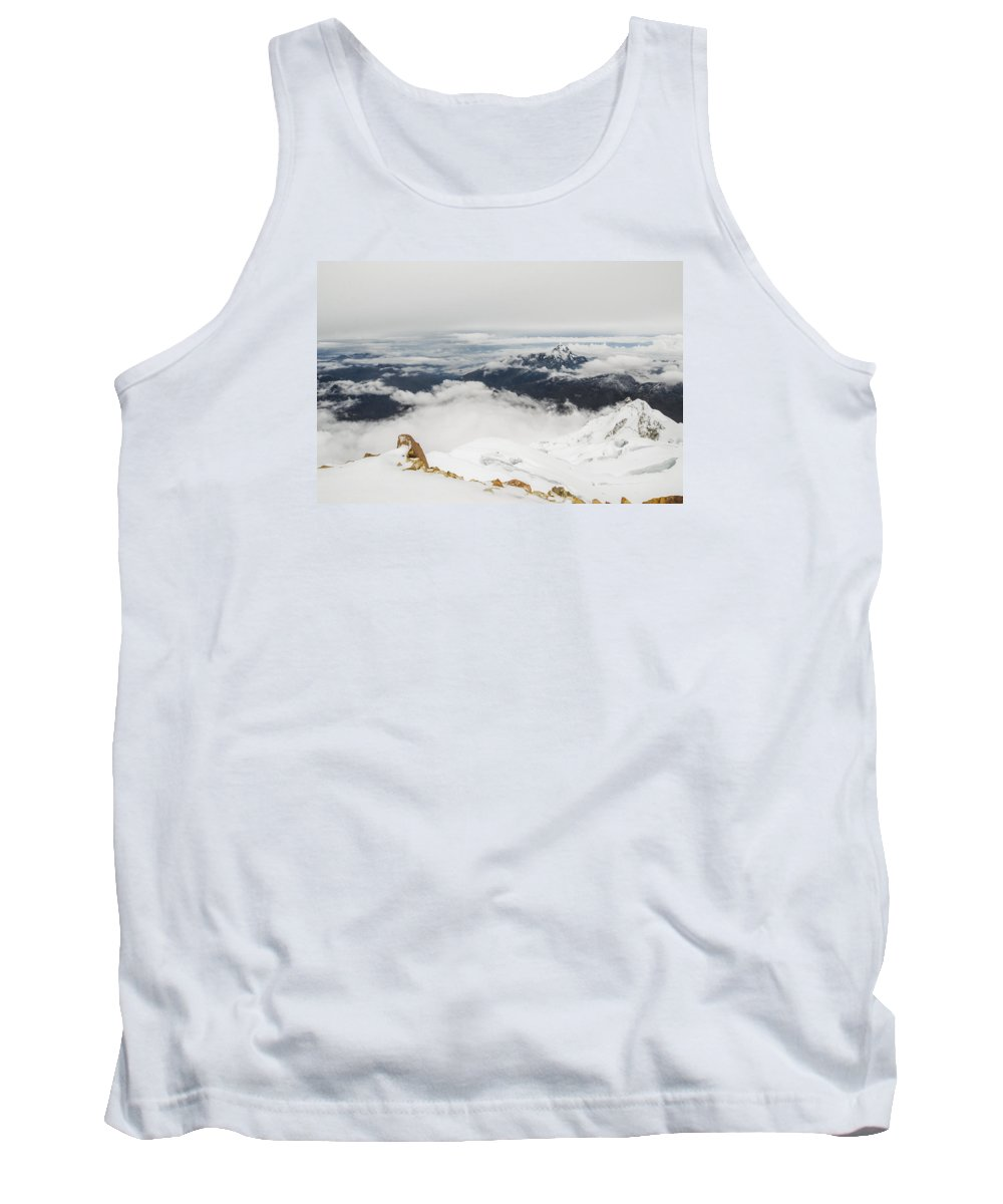 Snow Tank Top featuring the photograph The World Is Mine by Amit Zakay