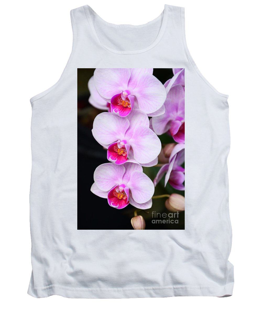 Orchids Tank Top featuring the photograph Three Of A Kind by Cindy Manero