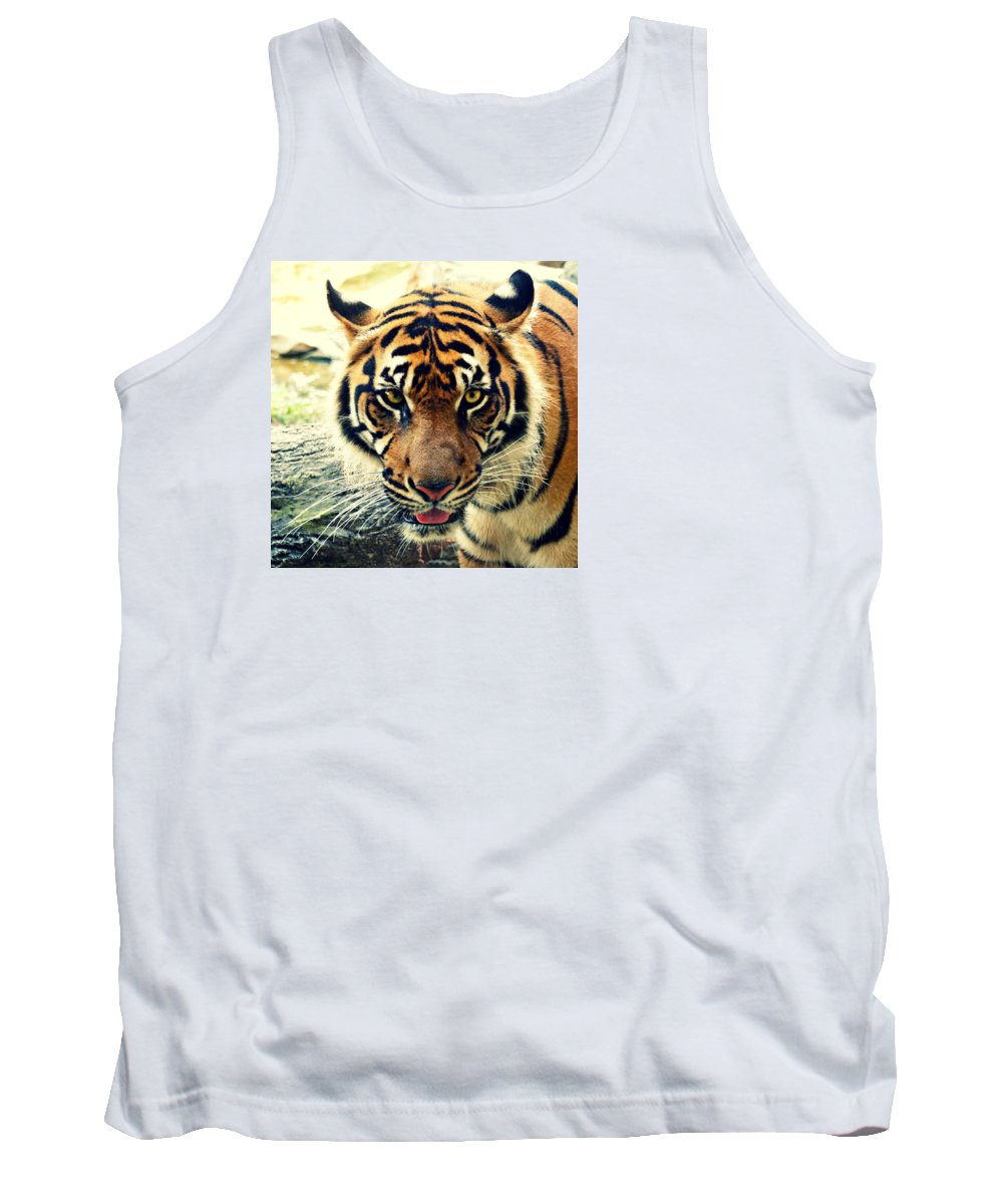 Tiger Tank Top featuring the photograph Tiger Tongue Two by Alice Gipson