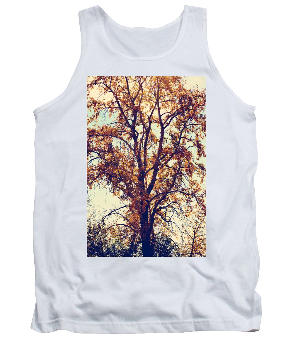 Trees Tank Top featuring the photograph To Wonder Under by The Artist Project