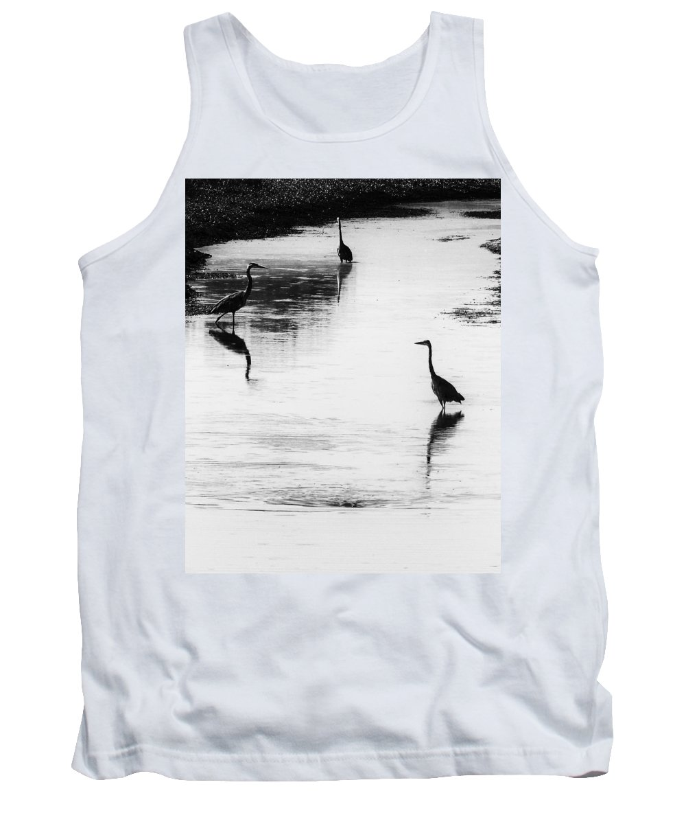 Great Blue Heron Tank Top featuring the photograph Trilogy - Black And White by Belinda Greb