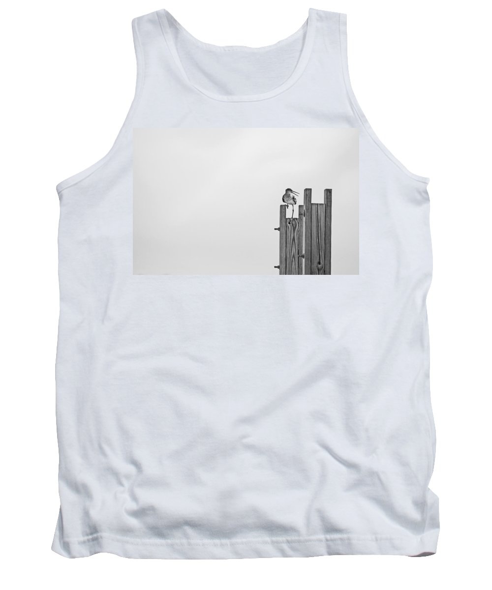 Bird Tank Top featuring the photograph Turn Around by Karol Livote
