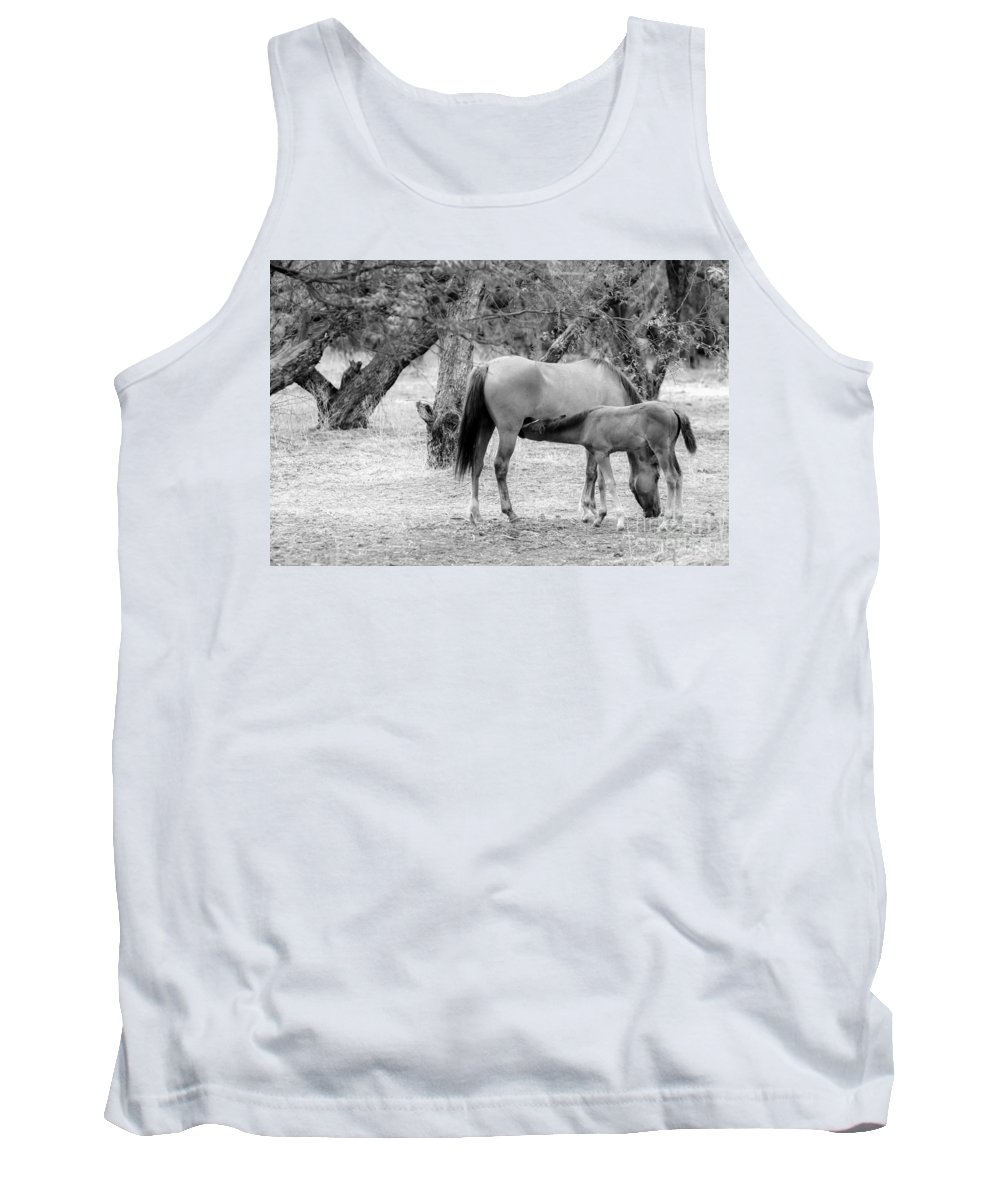 Arizona Tank Top featuring the photograph Two Horses by Nicholas Pappagallo Jr