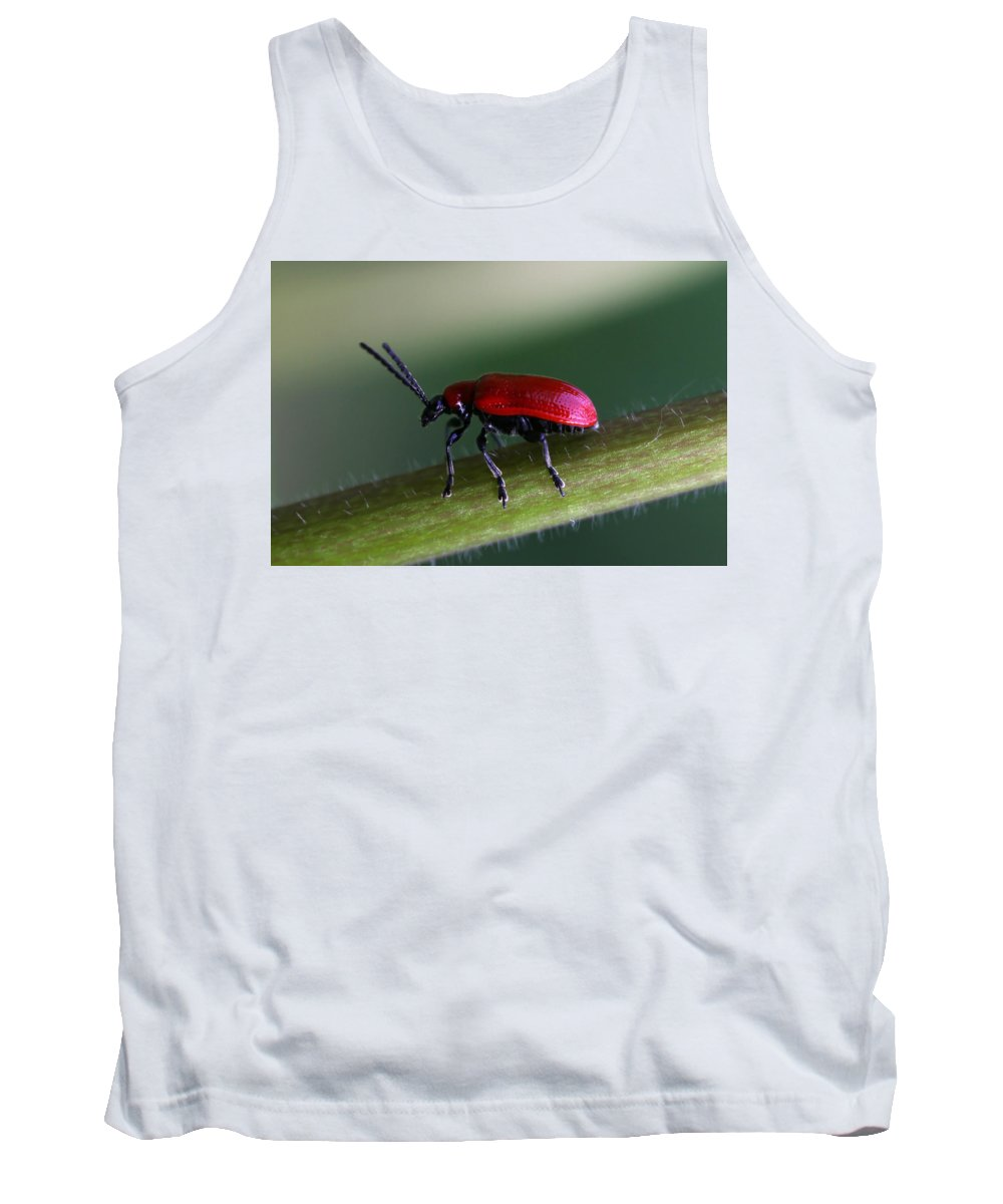 Insects Tank Top featuring the photograph Under Way by Annie Snel