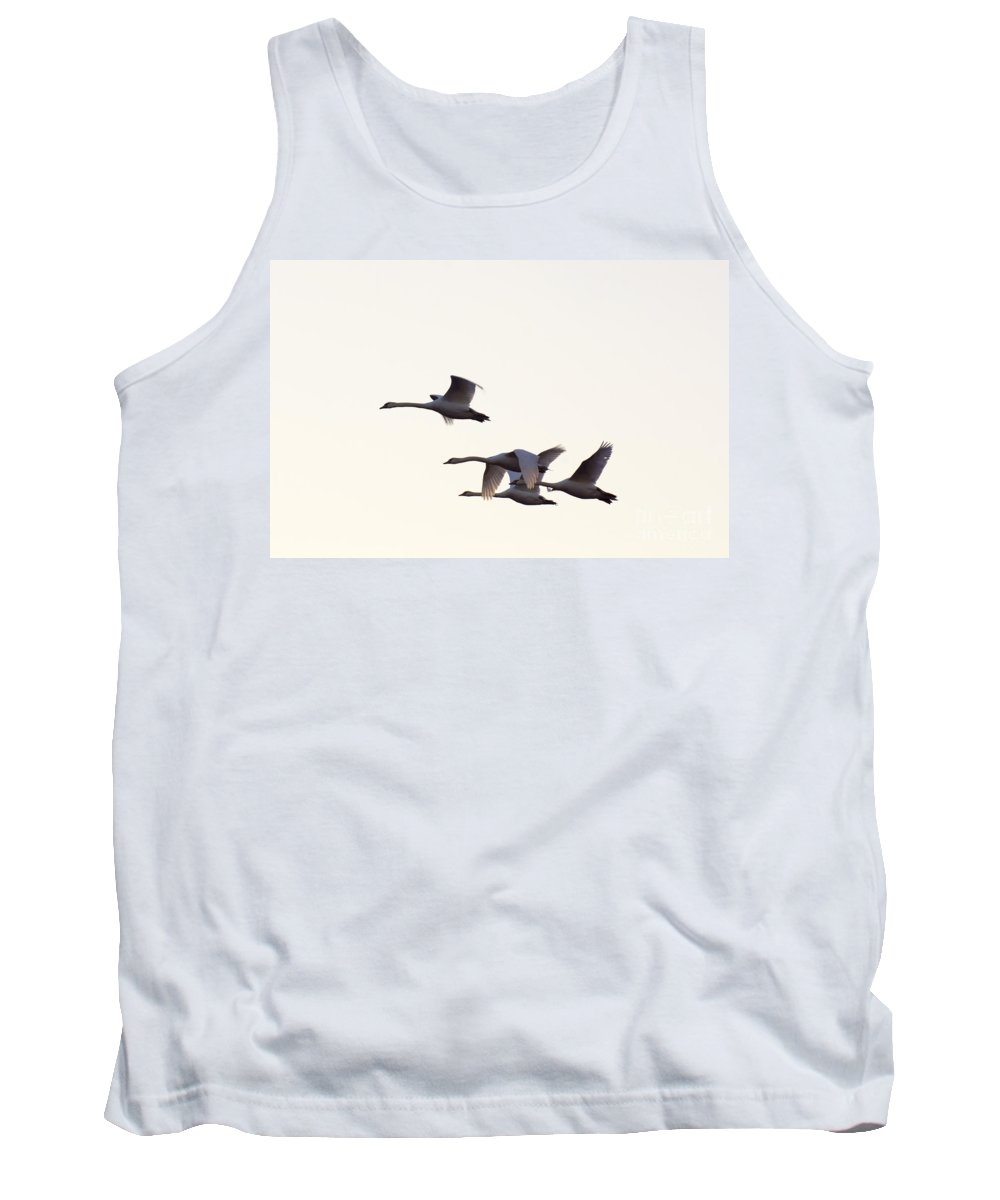 Mute Tank Top featuring the photograph Under Wing by Joe Geraci