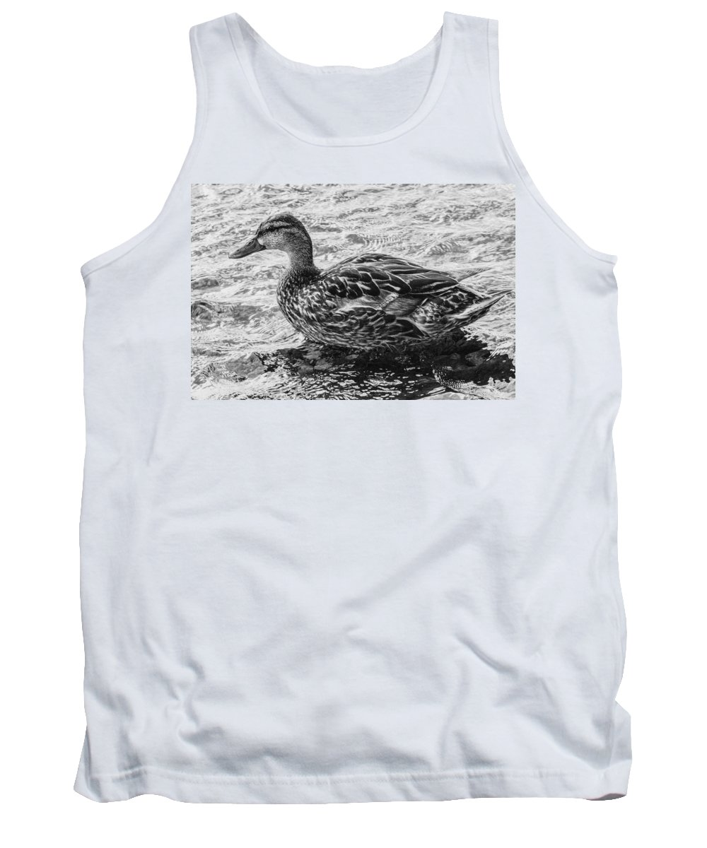 Black And White Tank Top featuring the photograph Wading Female Mallard by Allan Morrison