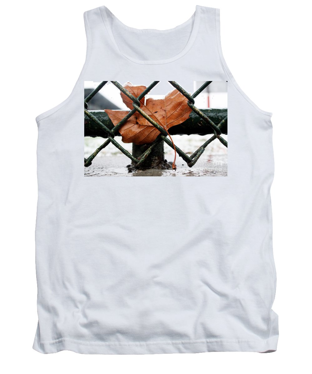 Water Tank Top featuring the photograph Water Leaf by Mark Ashkenazi