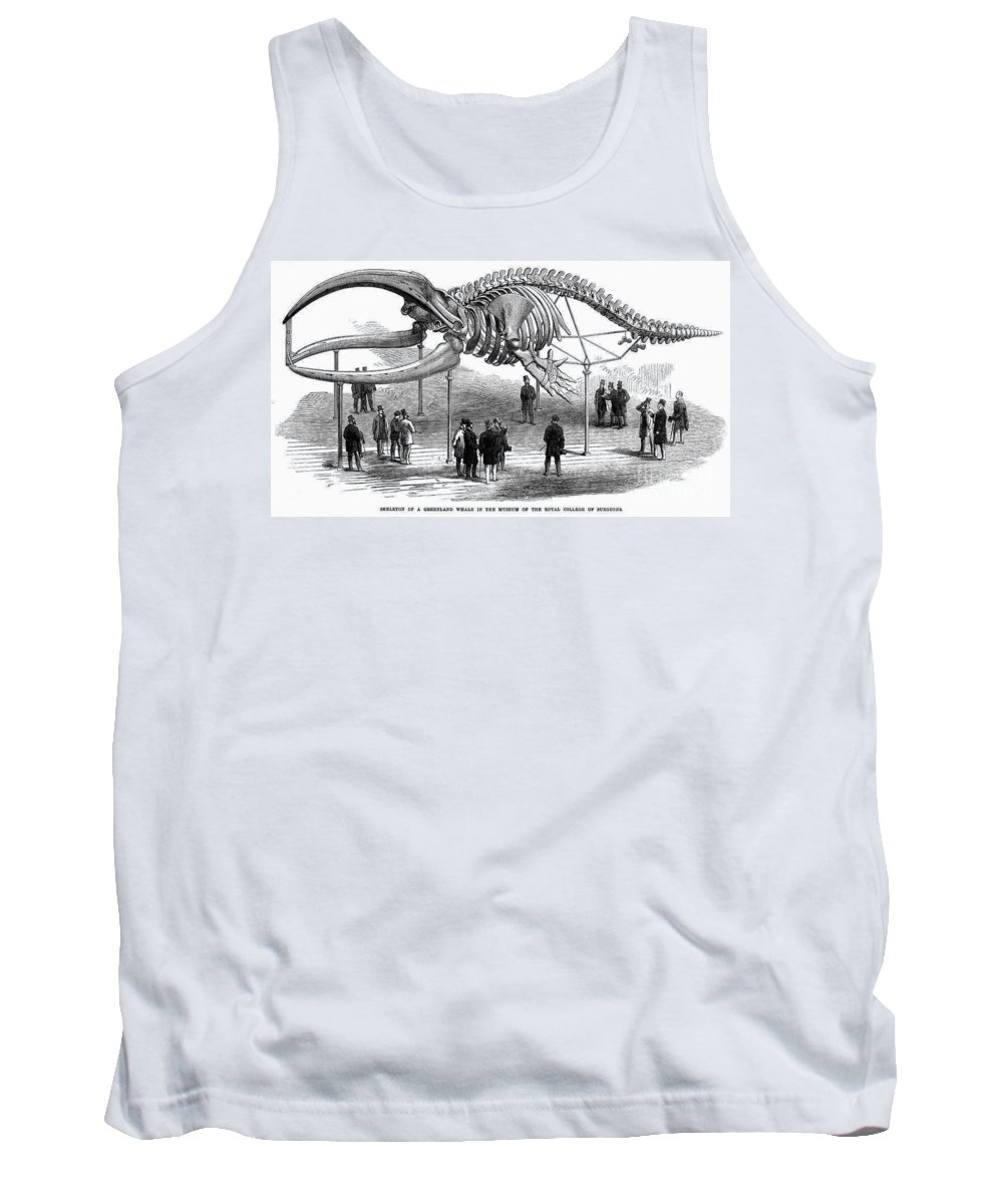 1866 Tank Top featuring the photograph Whale Skeleton, 1866 by Granger