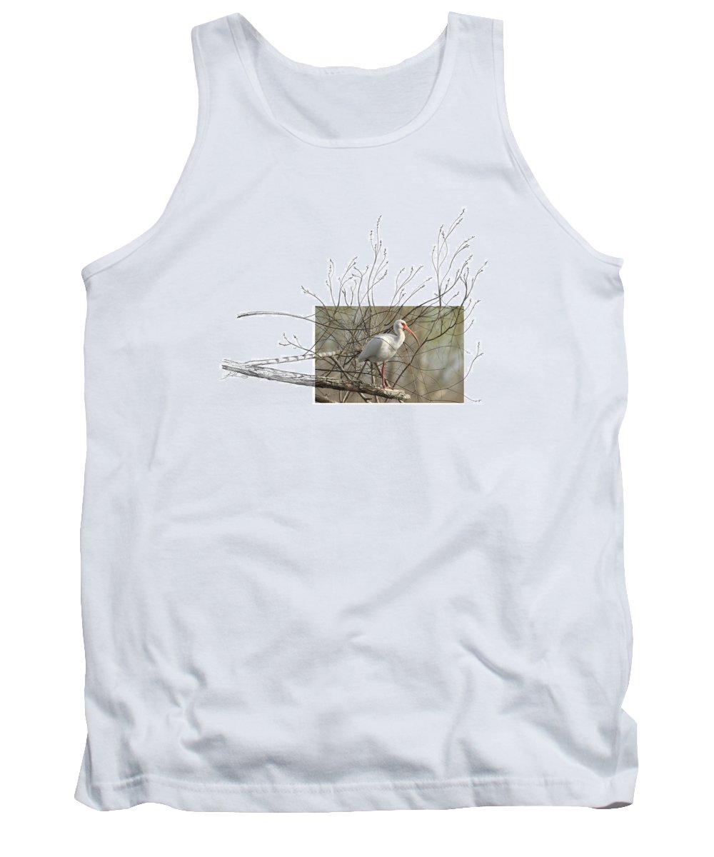 White Ibis Tank Top featuring the photograph White Ibis by Andrew McInnes