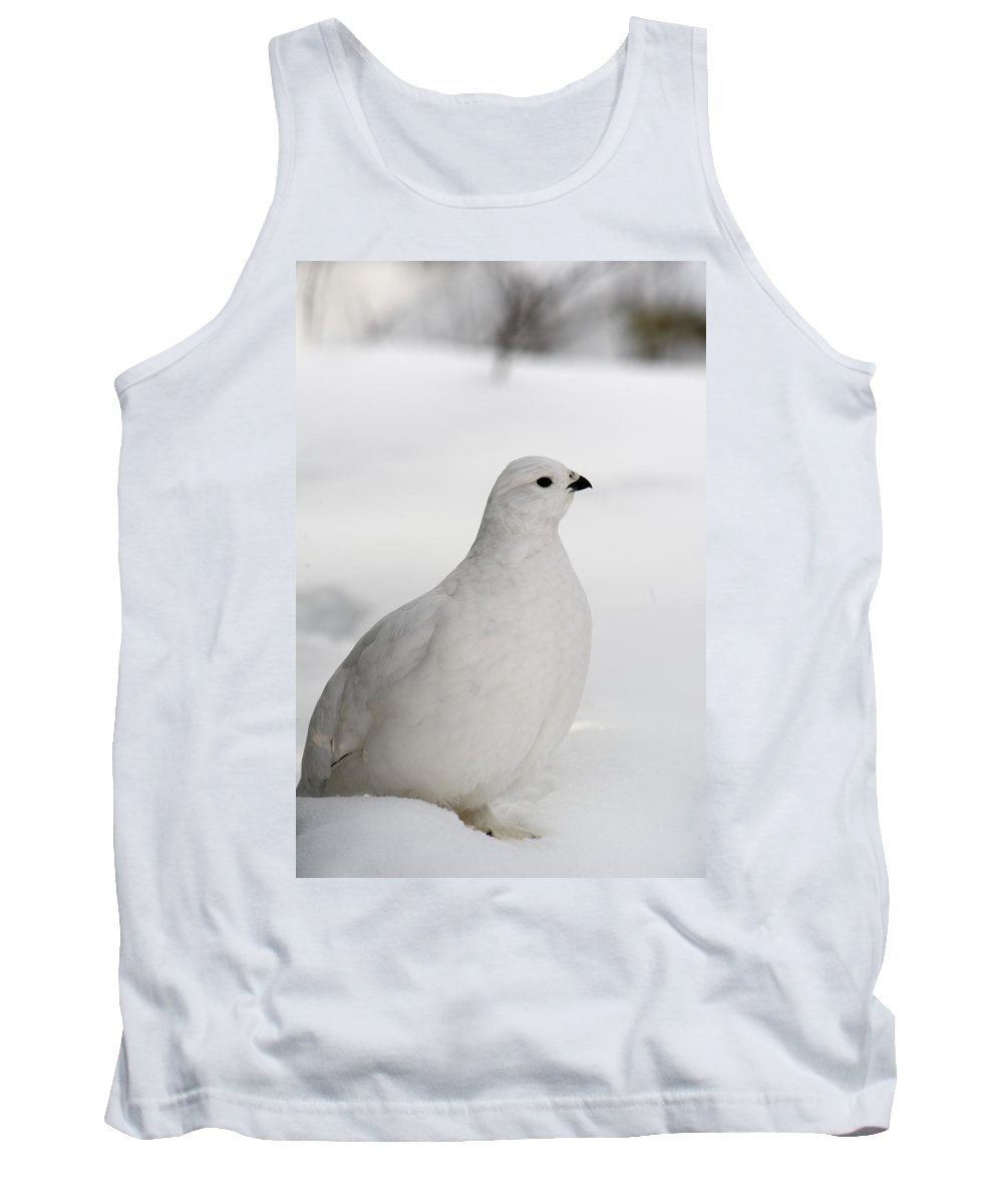 Feb0514 Tank Top featuring the photograph White-tailed Ptarmigan Camouflaged by Michael Quinton