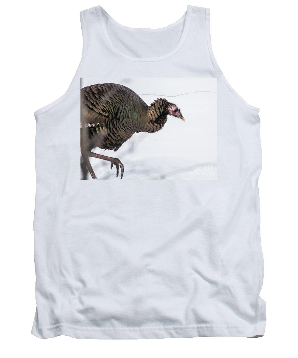 Wild Tank Top featuring the photograph Wild Turkey by Cheryl Baxter