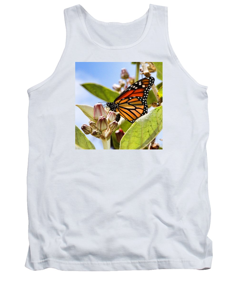 Butterfly Tank Top featuring the photograph Wings Up Monarch Butterfly By Diana Sainz by Diana Raquel Sainz