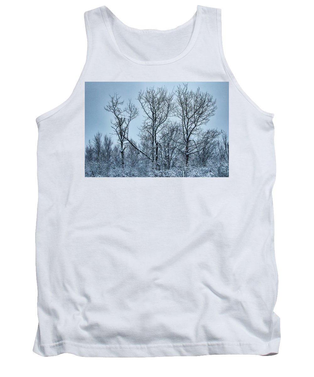 Trees Tank Top featuring the photograph Winter Morning View by Susan Capuano