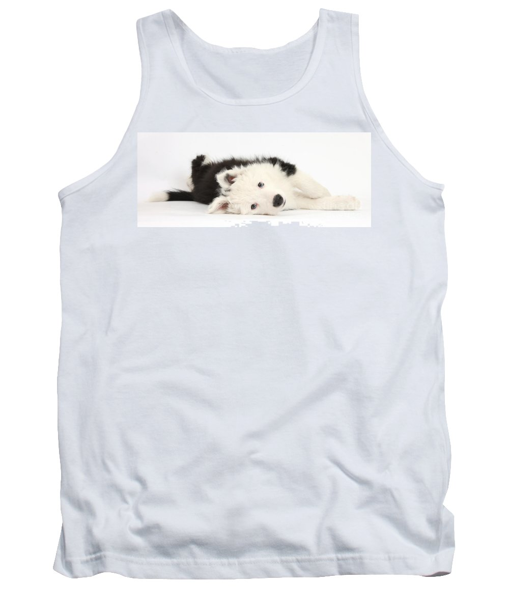 Nature Tank Top featuring the photograph Border Collie Puppy by Mark Taylor