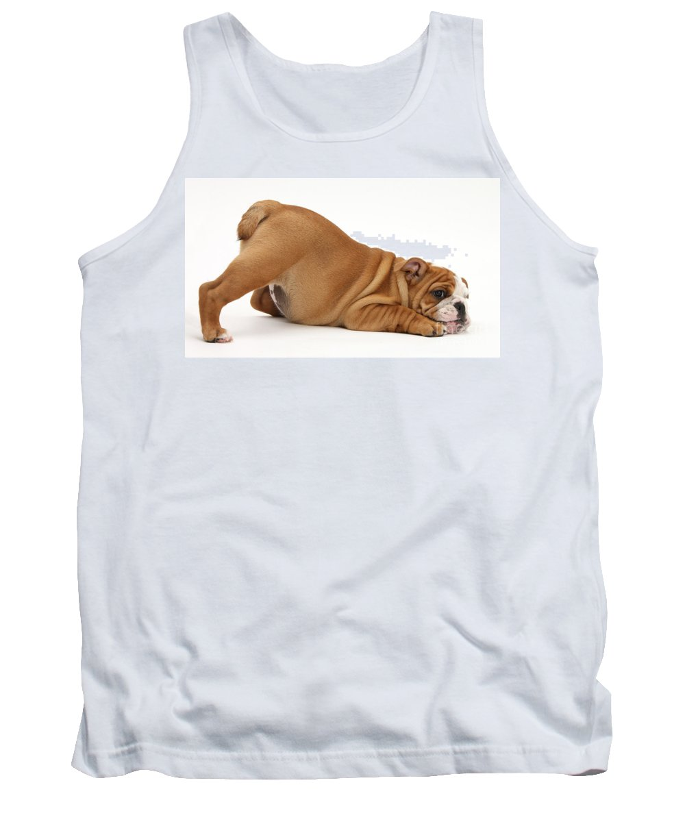 Animal Tank Top featuring the photograph Bulldog Puppy by Mark Taylor