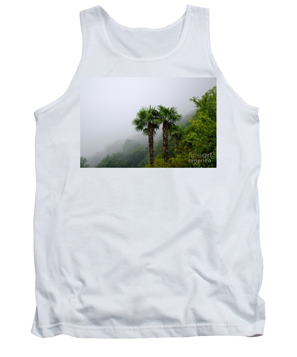 Palm Tank Top featuring the photograph Palm Trees by Mats Silvan