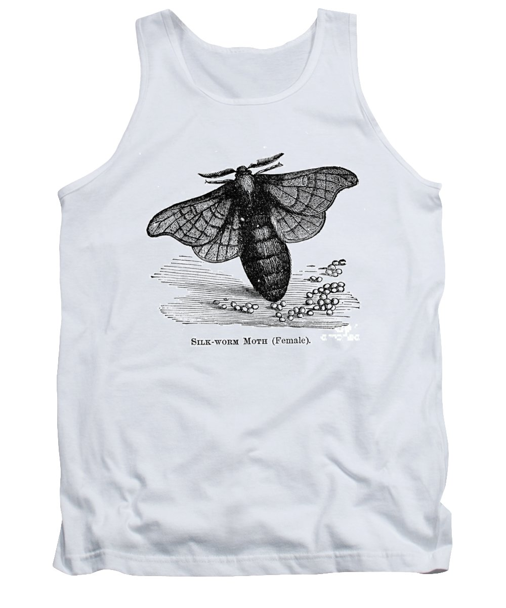 Animal Tank Top featuring the photograph Silkworm Moth by Granger